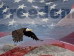 Цензура в США – есть ли она?