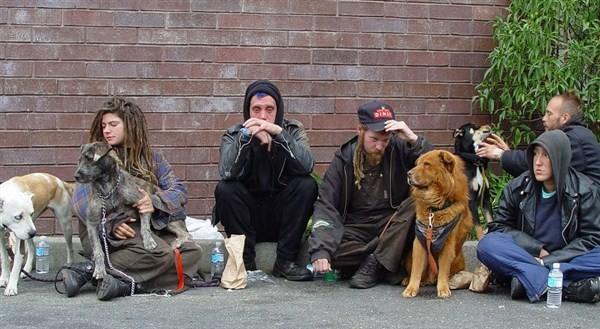 bezdoms2